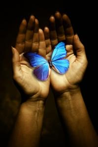 butterfly_hand.jpg